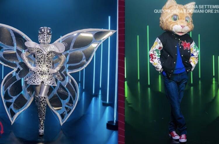 Farfalla e Gatto il cantante mascherato
